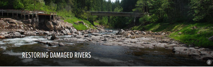 Restoring Damaged Rivers American Rivers